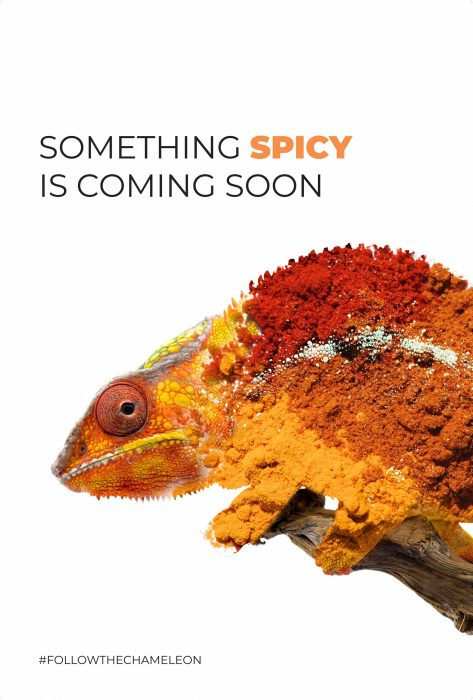Neka_CS_Chameleon_TeaserPoster_SPICY_o
